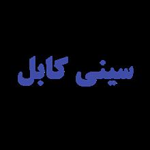 سینی کابل  - نردبان کابل