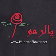 سوپر گل پاییزان  (پالرمو سابق ) 09128888673