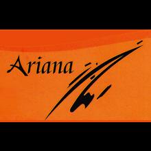 برق و صنعت آریانا 02133994294