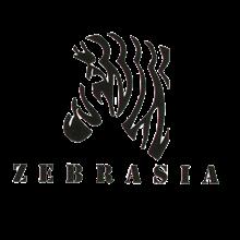شرکت زبرآسیا
