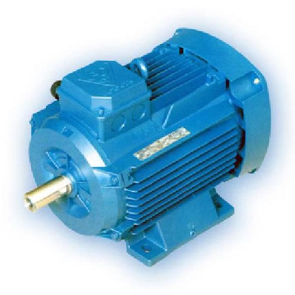 الکترو موتور سه فاز آلومینیومی