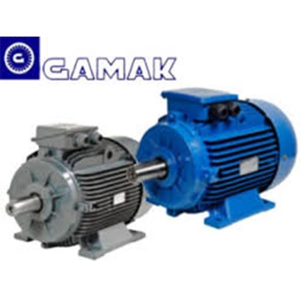 الکتروموتور گاماک ترکیه