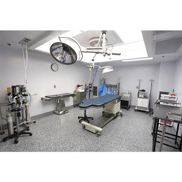 بیمارستان چشم پزشکی حیوانات