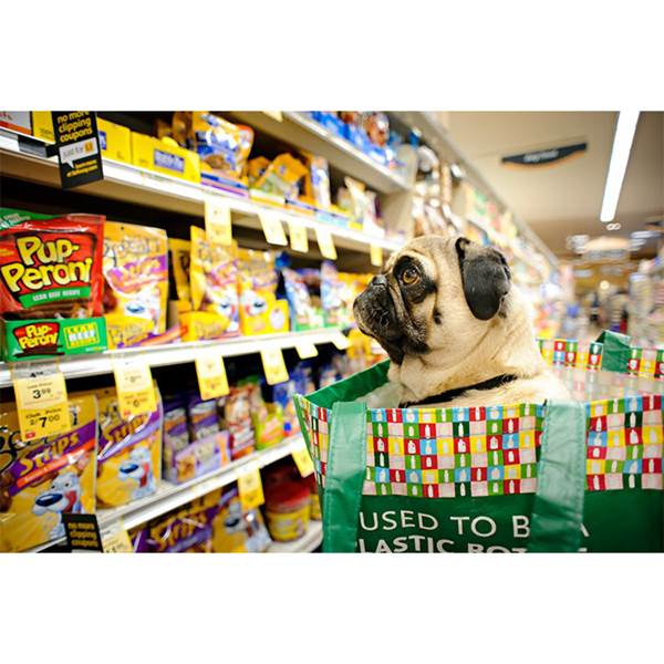 فروشگاه غذای حیوانات خانگی
