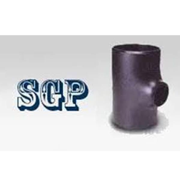 اتصالات مانیسمان SGP بنکن